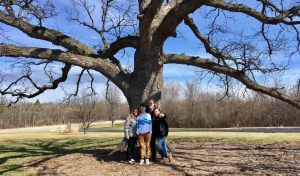 Hope says good-bye to our majestic oak tree.  250+ years of blessing our hilltop. You'll be missed, old friend.